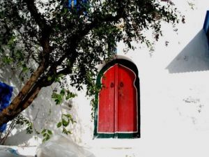 Photo de volontaire: Petite porte rouge (Sidi Bou Said)