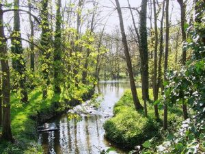 Photo de Gregory Foulon: Yerres 5