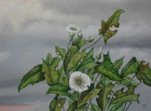 Peinture de Uko Post: plant and clouds