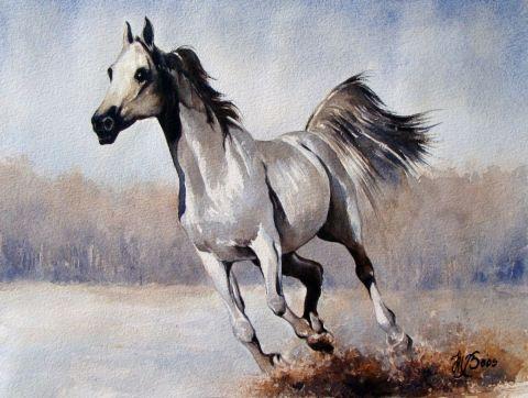 Cheval blanc peinture marcel boos for Peinture sur fer a cheval