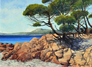 Paysage De Bord De Mer En Corse Peinture Marcel Boos