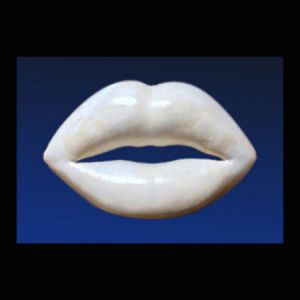 Sculpture de nabazac: Bouche Pop Beige