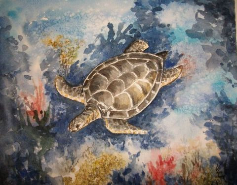 valerie CROCHARD - tortue en migration