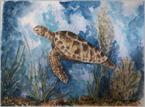 valerie CROCHARD - Tortue de mer en migration