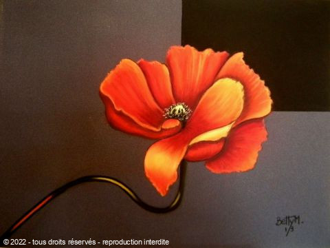 L'artiste BETTY-M peintre - coquelicot