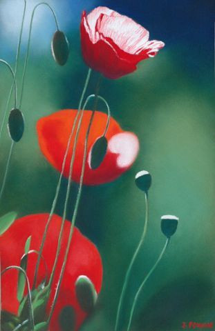 Janick Poncin - 3 coquelicots