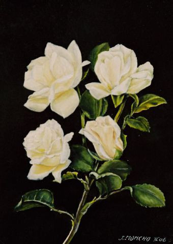 Jacques MONCHO - Roses blanches