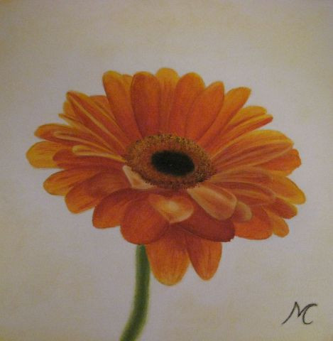 Marie-Christine COTTAREL   - gerbera