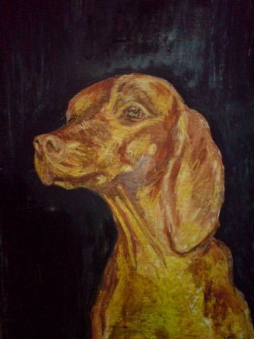 Mezei Paul - portrait de retriever