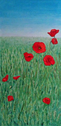 Heloise D - coquelicots