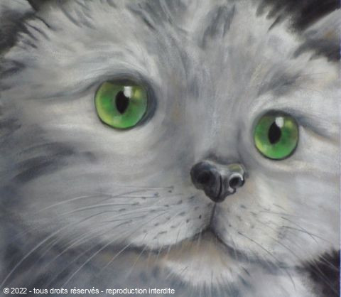 L'artiste BETTY-M peintre - chaton gris
