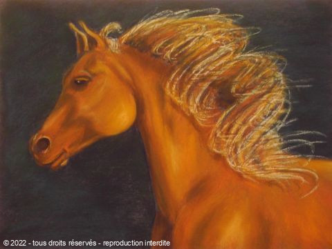 BETTY-M peintre - tête de cheval