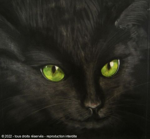 BETTY-M peintre - chat noir