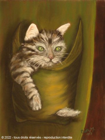 L'artiste BETTY-M peintre - chat en poche